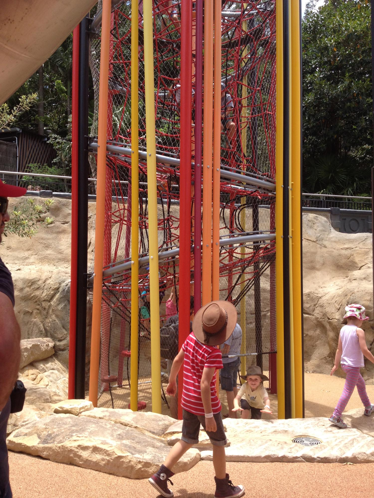 Taronga zoo lemur experience sydney play by design for Experiential design sydney