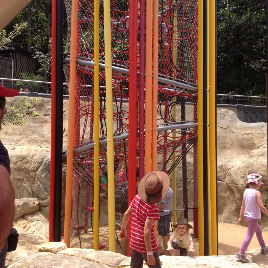 Taronga Zoo Lemur Experience Sydney